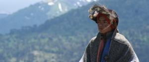 Indigenas Chile